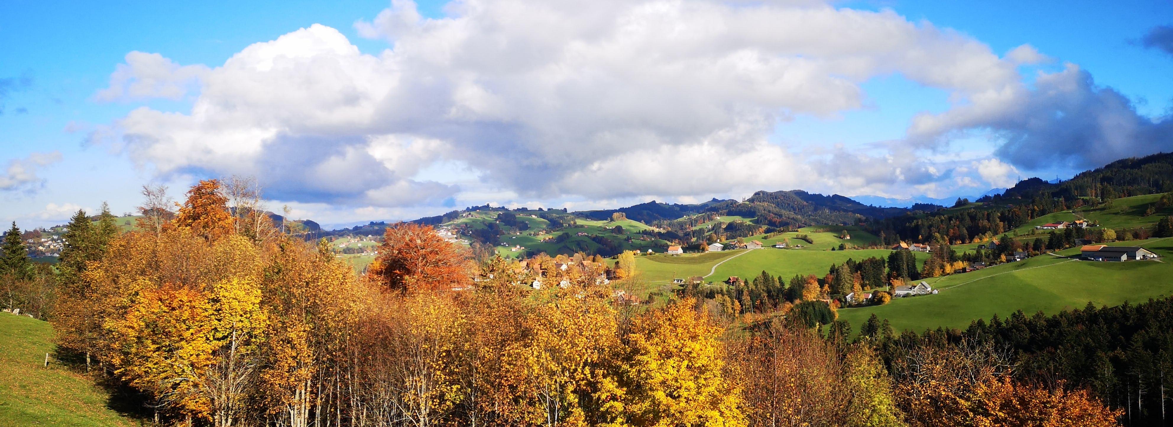 Berge Tagesreise Herbstwälder