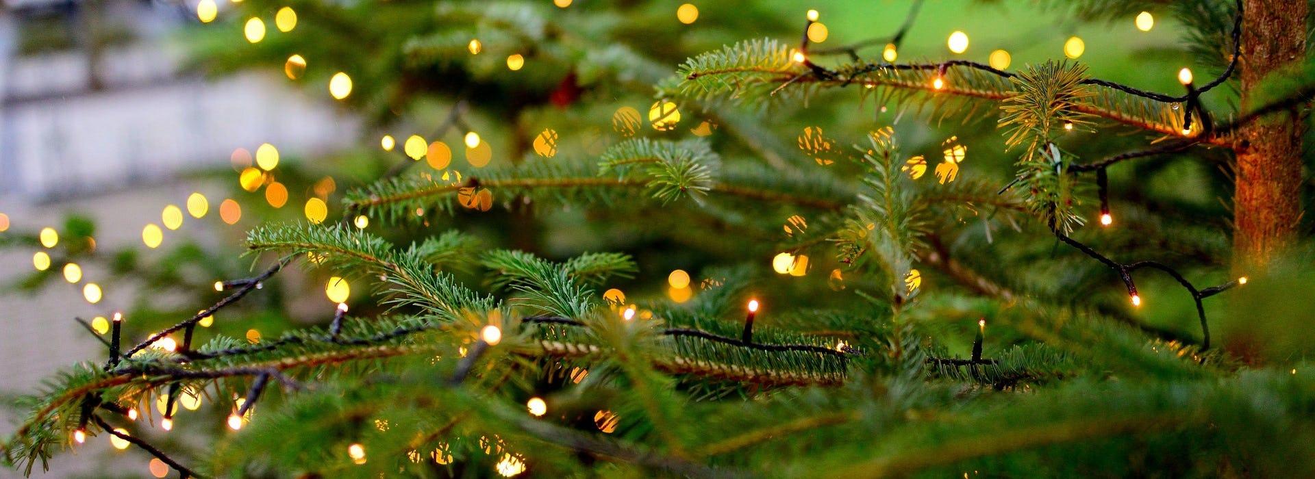 Ravensburg Tanne Ramsauer Carreisen Weihnachtsmarkt